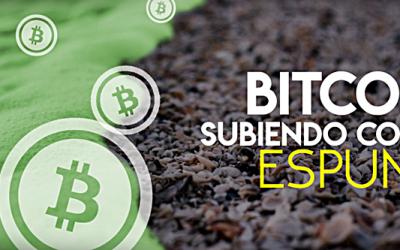 bitcoin-subiendo-como-la-espuma-400x250 Blog
